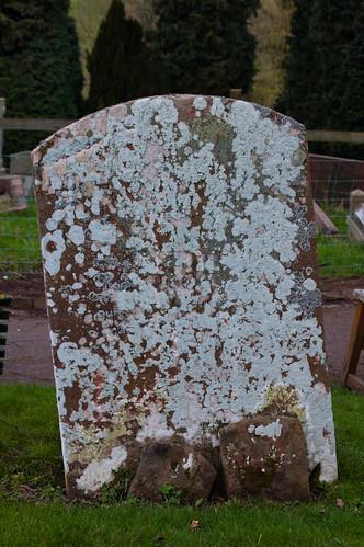 LIchen on gravestone: Claverley