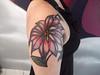 Minha nova Tattoo / My New Tattoo  Foto By