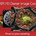 2011 FEI Owner Image Contest
