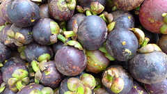 plant(0.0), damson(0.0), common fig(0.0), produce(1.0), fruit(1.0), food(1.0), purple mangosteen(1.0),