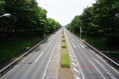 Hattou road