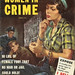 True cases of women in crime 3 copy
