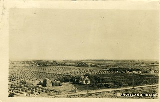 [IDAHO-J-0013] Fruitland Farms