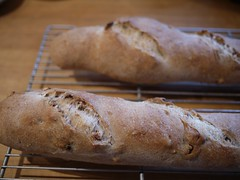 Walnut Bread - Out of the oven