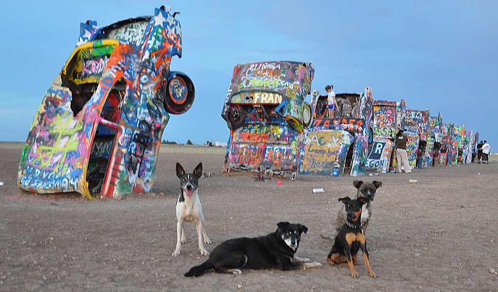 the kids at Cadillac Ranch