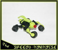 The Speedy Tortoise