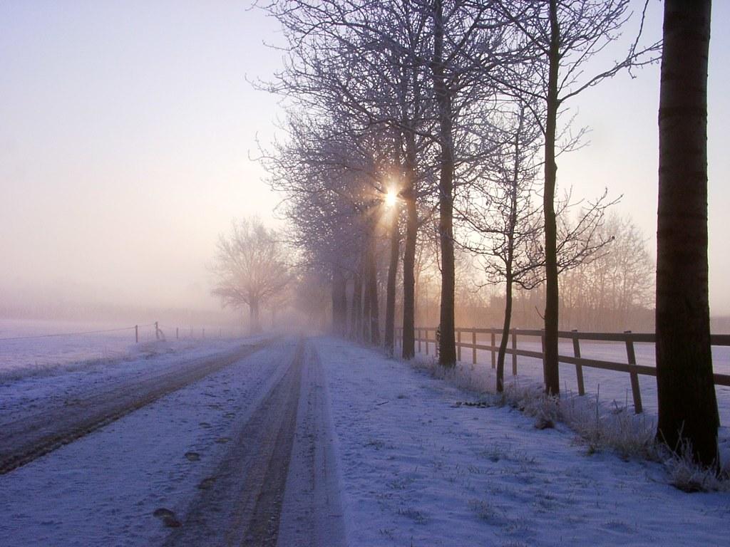 2004: winter