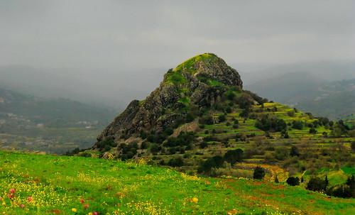 nature syria naturesfinest