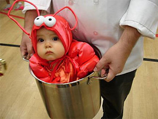 Funny Baby Lobster Costume