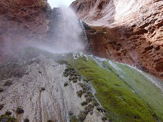 Grand Canyon National Park: Ribbon Falls 06947