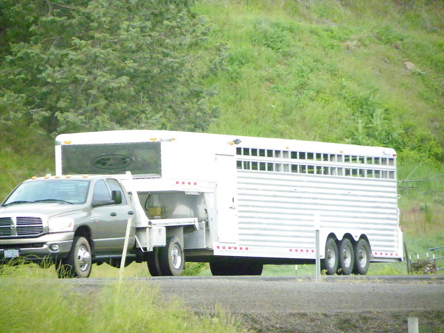 dodge truck pulling tri axle stock trailer