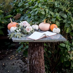 I love fall inspired weddings! Pumpkins and roses at the guest sign-in table.