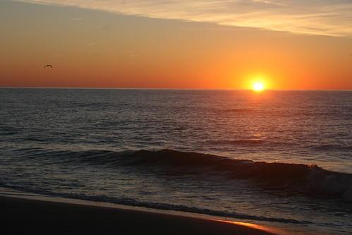 ocean beach sc sunrise island south atlantic carolina pawleys