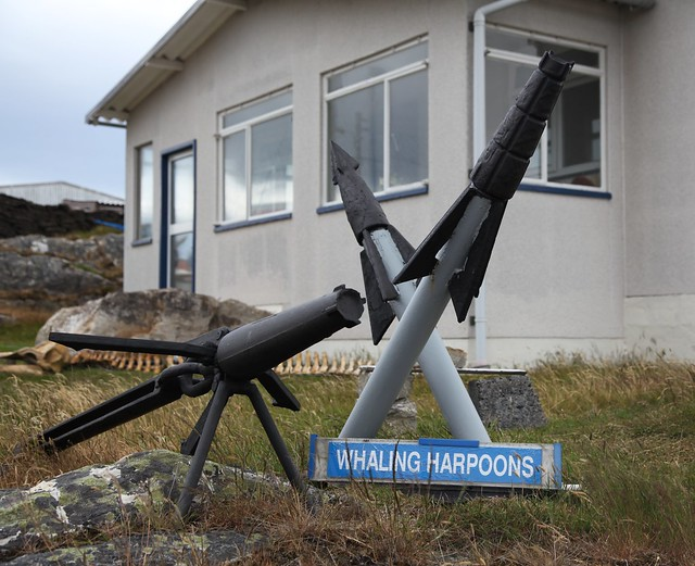 Header of harpoons