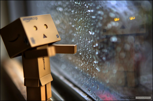 Dark, Dreary, Dank, Damp Days For Danbo