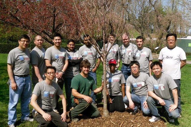 Goldman Sachs Volunteers and BBG arborist Travis Wolf proudly pose with the cherry tree they planted. Photo by Kathryn Littlefield.