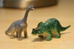 animal figure, fauna, dinosaur,