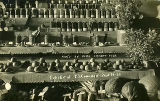 [IDAHO-K-0004] T.J. Coonrod Exhibit - Emmett
