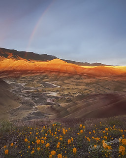 Painted Hills Light Show
