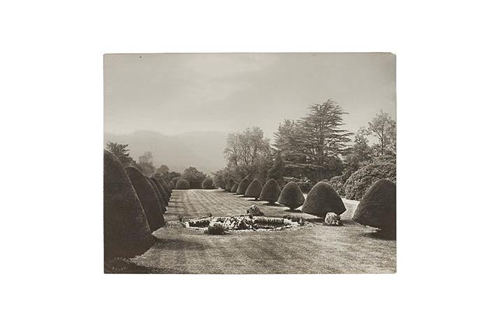 Platinum Print - Neutral, Landscape