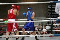 striking combat sports, boxing ring, professional boxing, individual sports, contact sport, sports, combat sport, sanshou, amateur boxing, boxing,