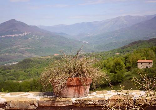 """Vaizdas iš terasos """"La zizzania e il Mandarino"""""""