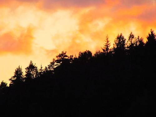 sky nature weather norway clouds spring forrest outdoor skyer kongsvingerfestning kongsvinger canonsx30is