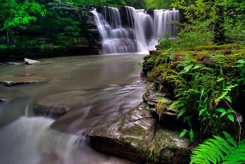 twinfalls dixny watkinsglen creek hiking hiker gully green gorge glen ny stream upstate waterfall waterfalls sugarhillstateforest