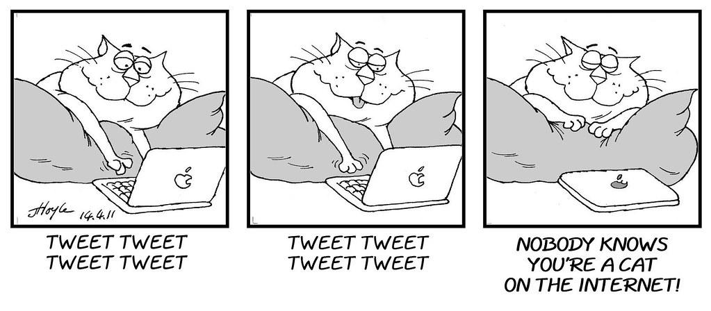 CatnipComic018