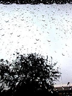 3# Kijkend uit mijn raam