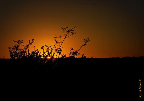 sunset brazil brasil pb ne pds araruna parqueestadualpedradaboca quartasunset