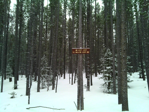 scenic wyoming snowyrange trailsign medicinebownationalforest