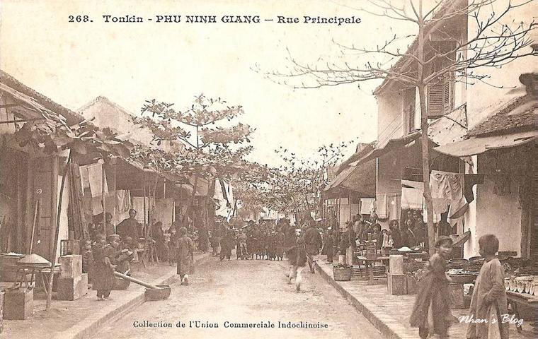 Phu Ninh Giang (4)