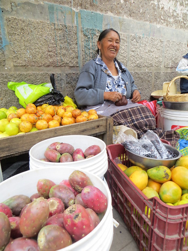 this woman selling my favourites - tuna (cactus fruit), granadilla, mango and blueberries - she loved posing too