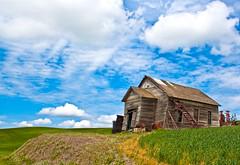 Palouse run down barn