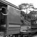 Bukit Timah Train Station