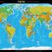 HD Tintin Globes