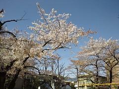C360_2012-04-12-08-57-47
