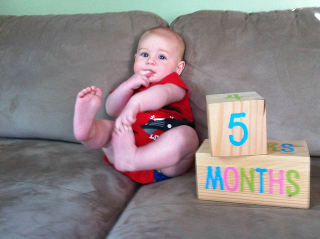 05 months-3