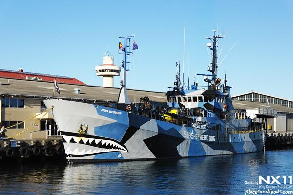 seasheperd ship hobart1