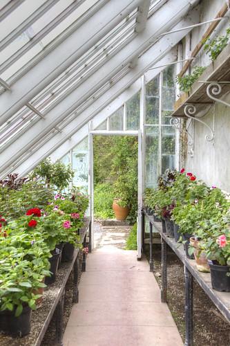 2012-06-02 Greenhouse at Kailzie Gardens 1