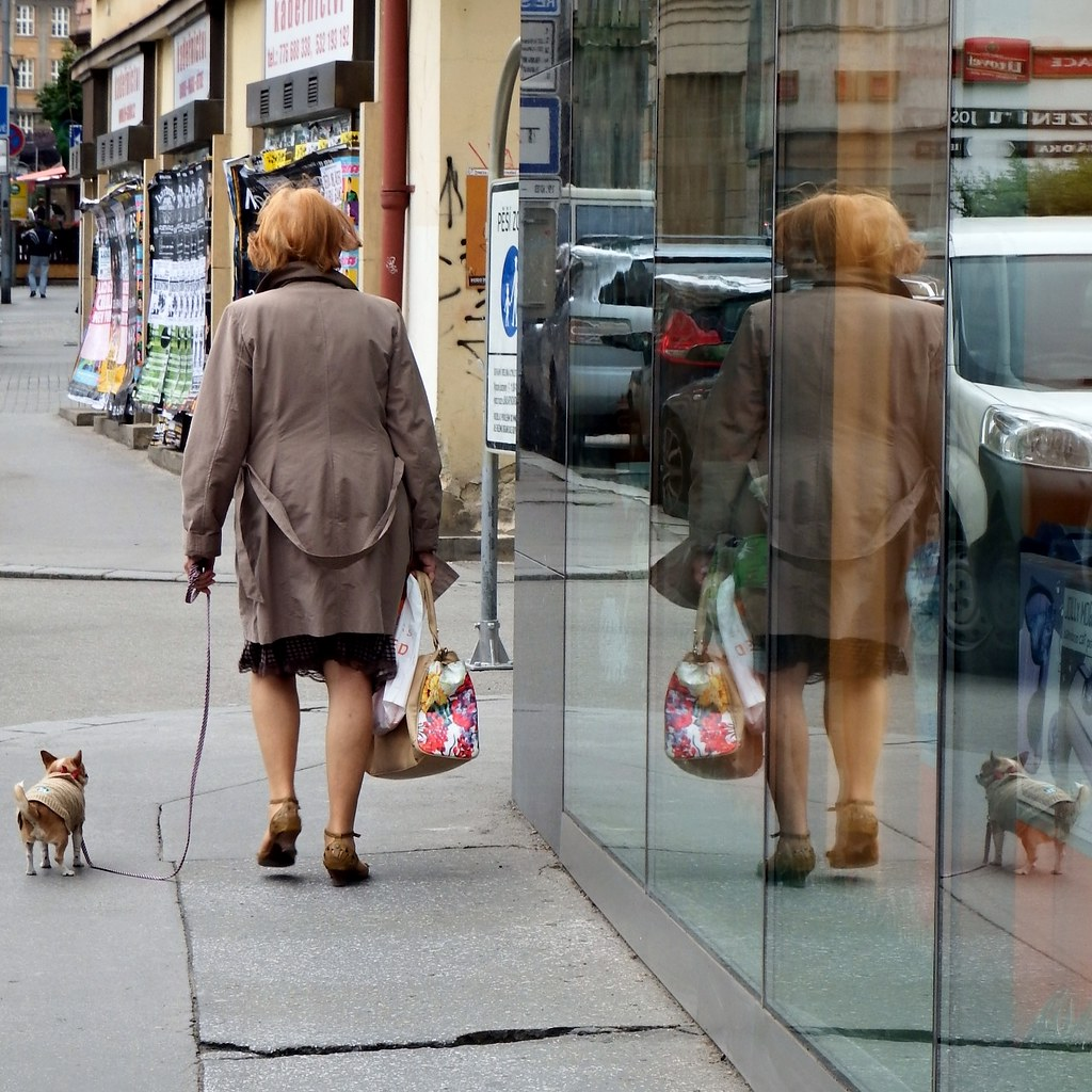 Woman with a Dog - goD a htiw NamoW