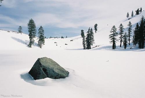 Sierra Snow Scene by Wayne-K