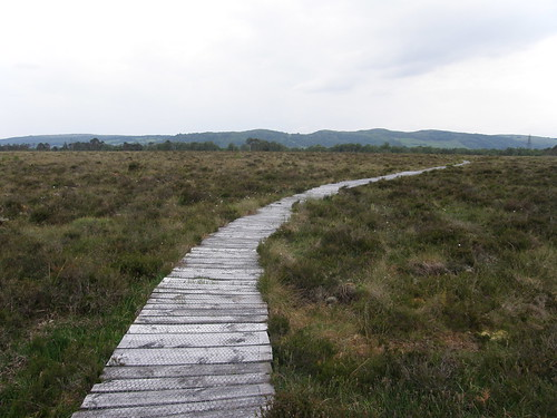 Meathop Moss Boardwalk, views to Cartmell Fell