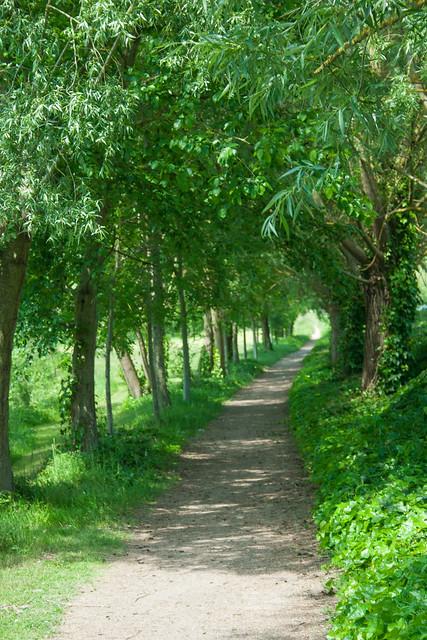 Chemin du Roy, Giverny