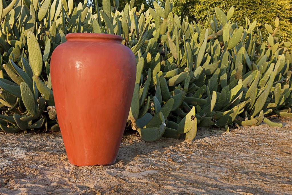 Roman Oil Jar