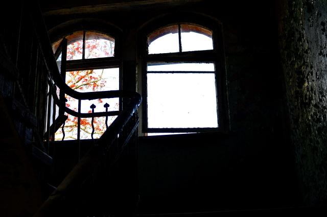 Beelitz_Heilstätten_2014_104