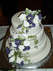 The Cake Image