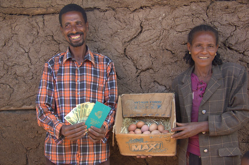 Improving village chicken production to elevate livelihoods of poor people in Ethiopia project, field visit in May 2014