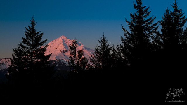 Mount Hood - Alpenglow & Silhouettes (explored)